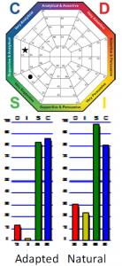 DISC-graph